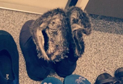 ミニマリスト冬用ブーツ
