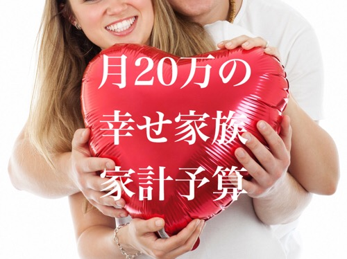 【東京】手取り月20万家族の家計簿、車持ち予算編