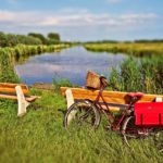 【私の愛車はママチャリ】ロードバイク乗りのママチャリ愛を聞いてください