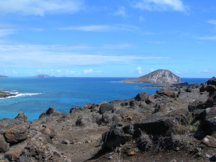 ハワイひとり旅現地ツアー
